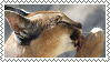caracal stamp by bulletblend
