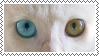 odd-eyed cat stamp by bulletblend