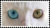 odd-eyed cat stamp by bulletblend