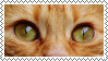 cat eyes stamp by bulletblend
