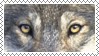 wolf eyes stamp by bulletblend