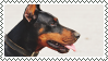 doberman stamp by bulletblend