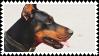 doberman stamp by bulletblend