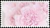 petal stamp by bulletblend