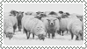 sheep stamp by bulletblend