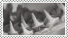 shark teeth stamp by bulletblend
