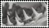 shark teeth stamp by bulletblend