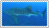 whale shark stamp by bulletblend