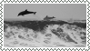 dolphin stamp by bulletblend