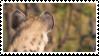 hyena stamp by bulletblend