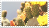 cactus stamp by bulletblend