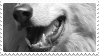 wolf stamp by bulletblend