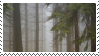 forest stamp