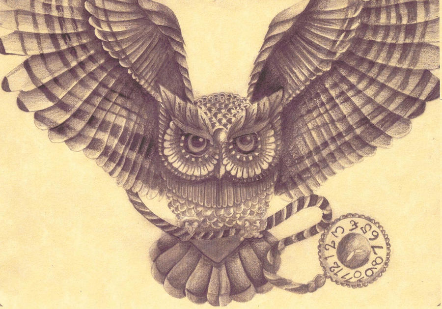 Owl drawing by amylou31 on deviantart for Cool drawings of owls