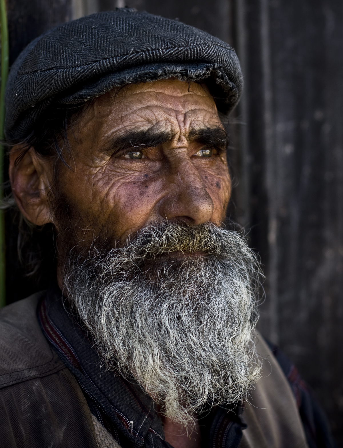 1000+ images about old people on Pinterest | Old mans, Old ... An Old Man Face With Beards Images