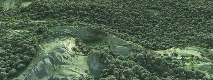 Fields: Landscape Study