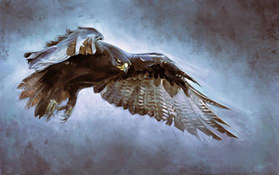 eagle - digital drawing