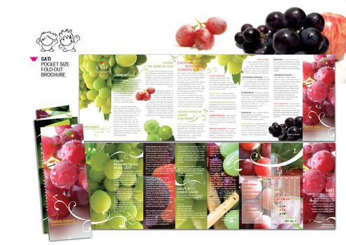 Sati Fold-out Brochure