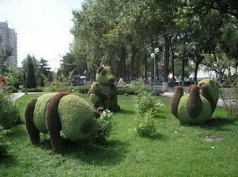 Creative Art on Garden