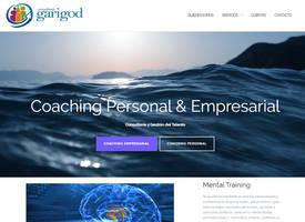 Consultora Garigod Website