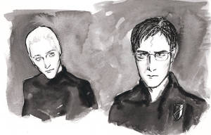 Mysteries Harry and Draco
