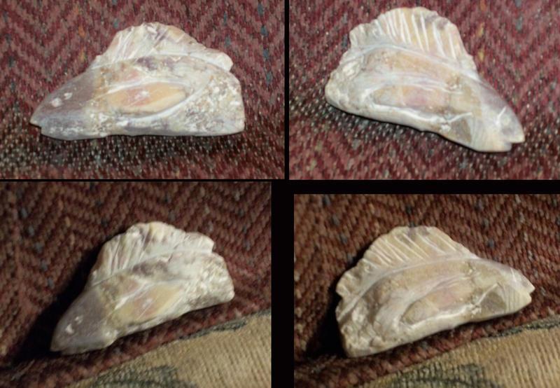 Stone Fish (WIP)