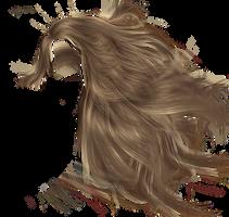 Hair8 by Liska250