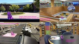 Twilight visiting Clinton-Macomb Public Library