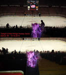 Twilight visiting Joe Louis Arena