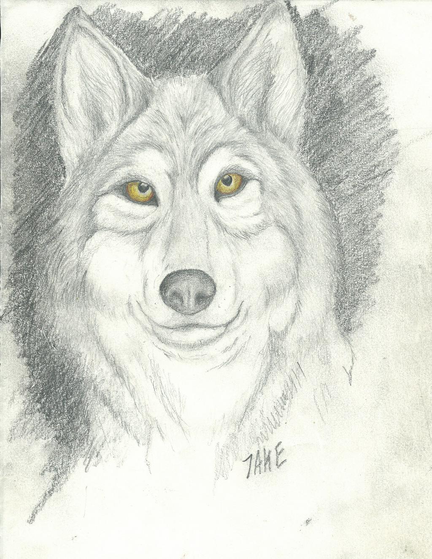 El Lobo by Nayikee