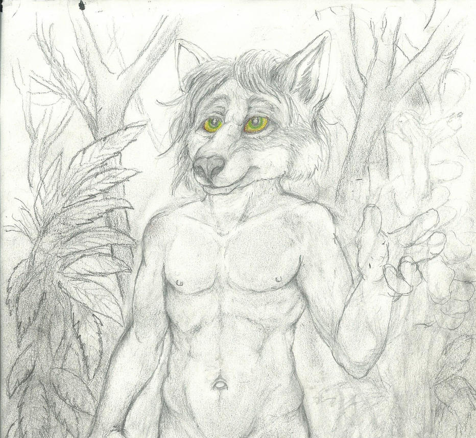 A walk in the Rain Forest W.I.P. by NevadaCoyotle