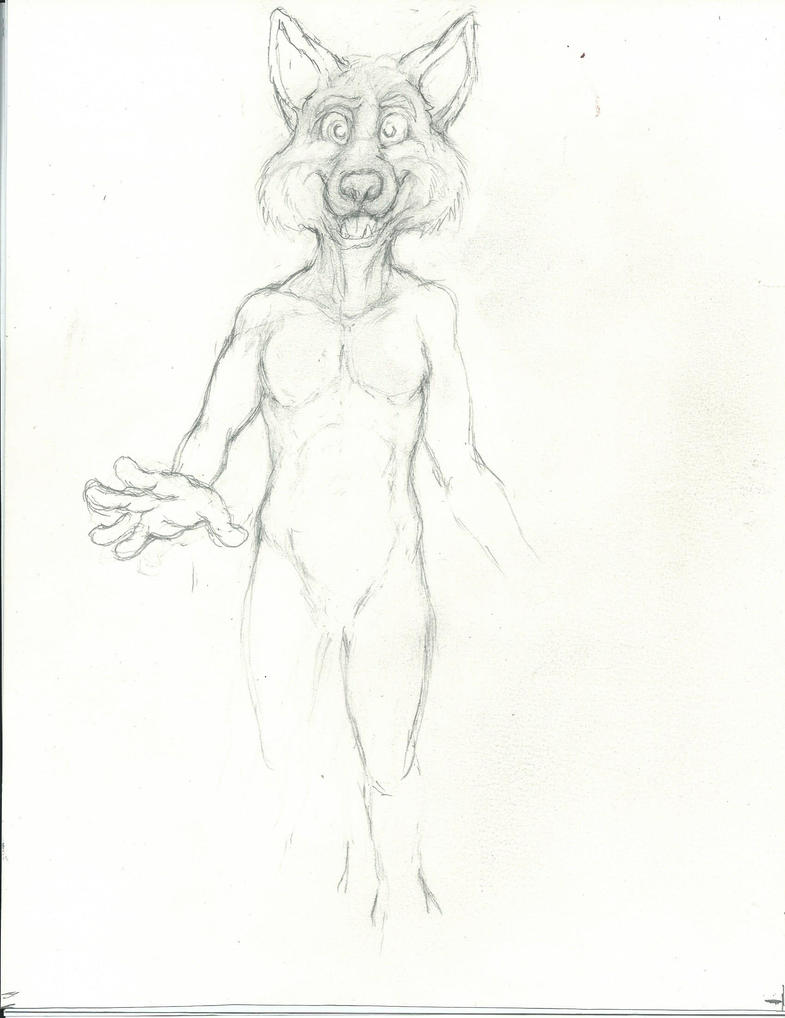 New Style of anthropomorphic character  W.I.P by Nayikee