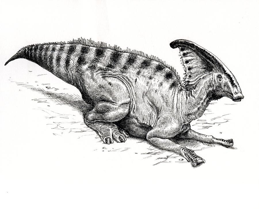 Parasaurolophus walkeri by pheaston