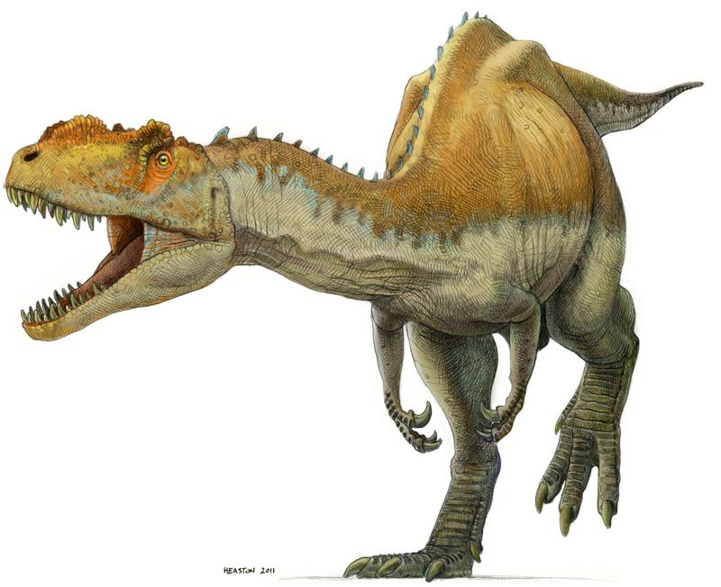 Yangchuanosaurus vs Albertosaurus - Dinosaurs Forum
