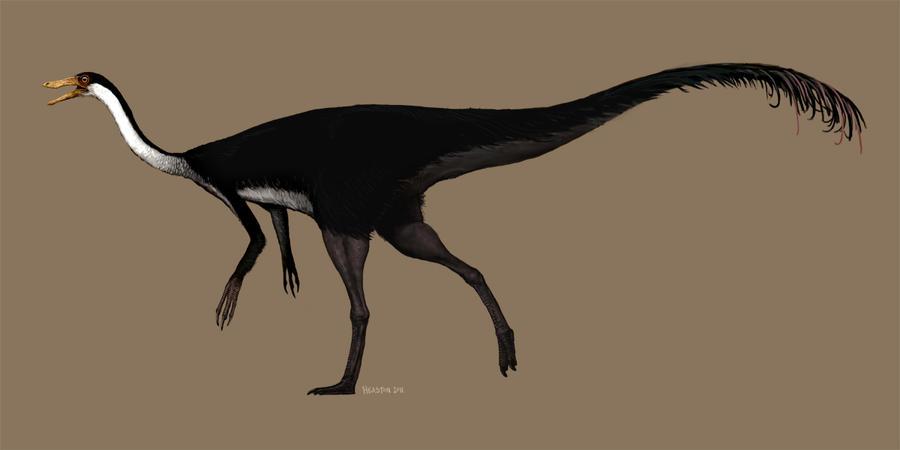 Gallimimus by pheaston