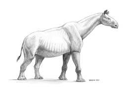Paraceratherium by pheaston