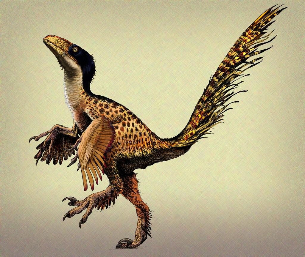 deinonychus sculpture by pheaston - photo #31