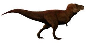 rex again