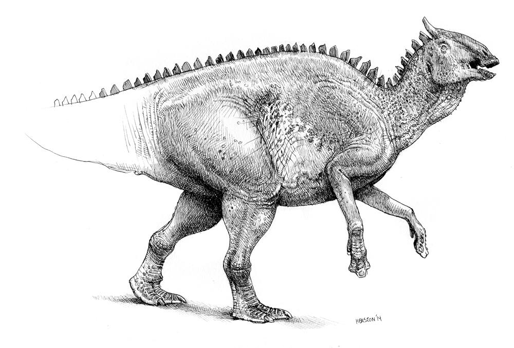 Saurolophus by pheaston
