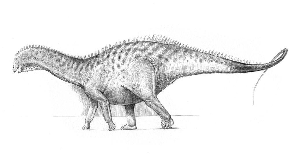 Dicraeosaurus by pheaston