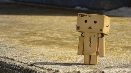 Danbo are (NOT) alone by KernaDesign