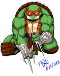 Teenage Mutant Hero Turtle