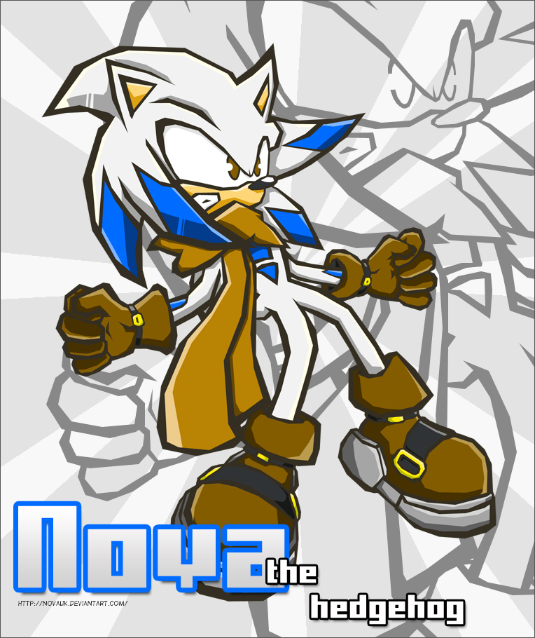 Nova The Hedgehog by omgNova