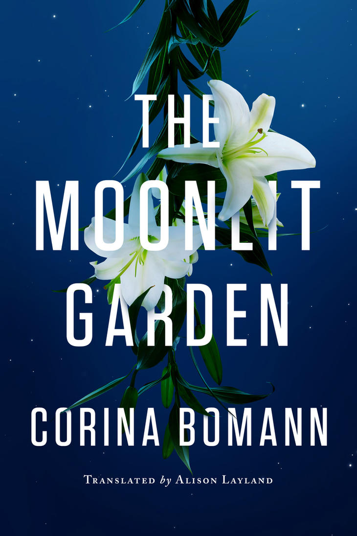 The Moonlit Garden by mscorley