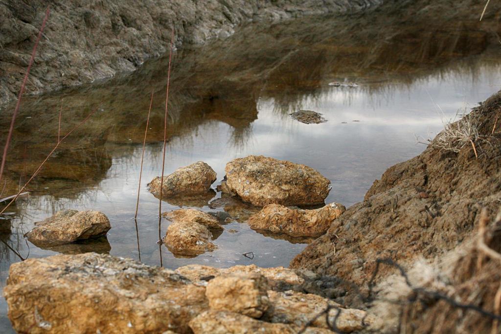 Erosion Overflow by donnasueb