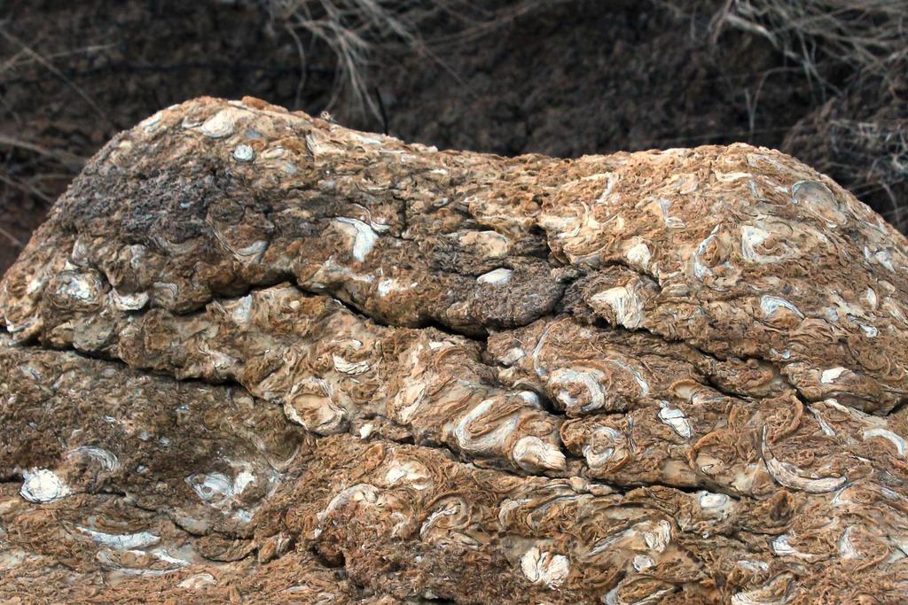 Natural Stone by donnasueb