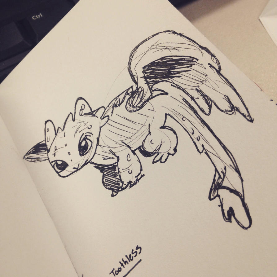 Toothless Ink Sketch by AbbyCatWolff