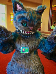 Chesire Cat by CavalierCory