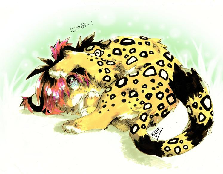 Meow by Jeniak
