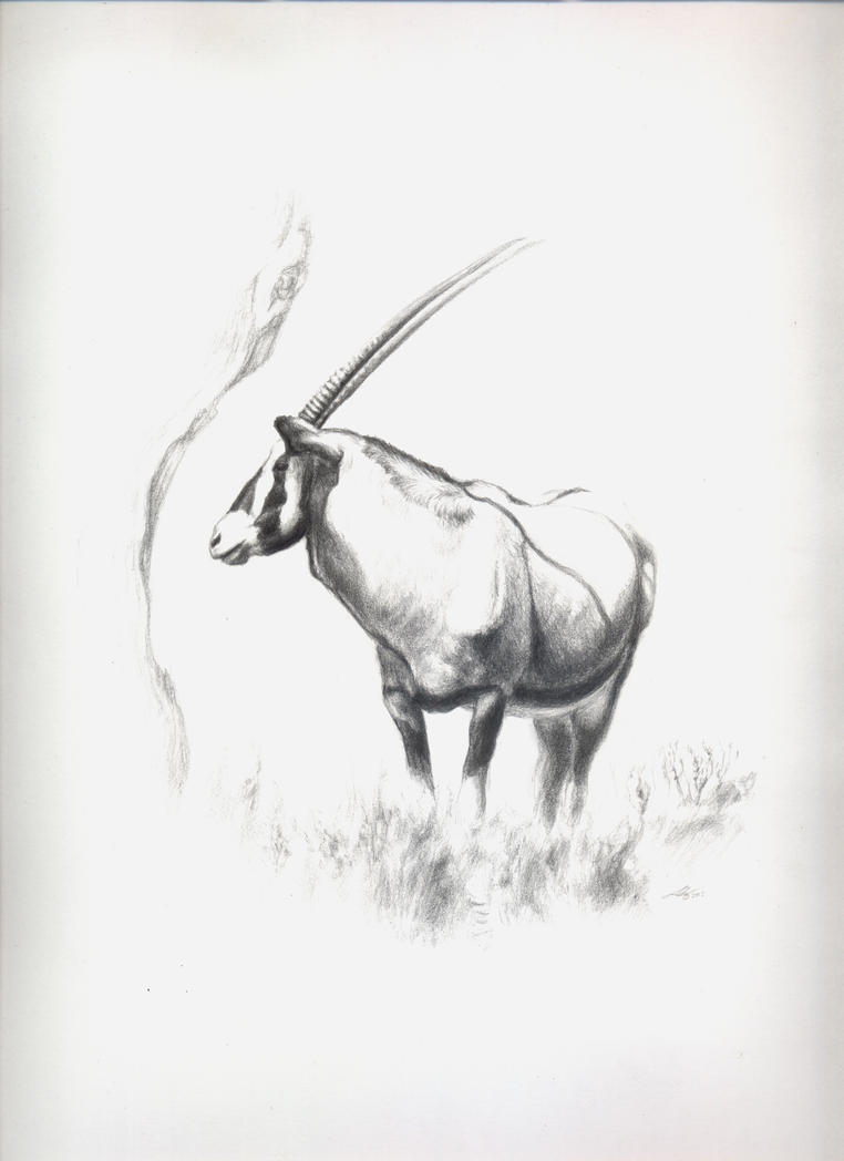 Oryx by Andreiuska